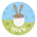 Bunny Chick Boy Personalized Plate